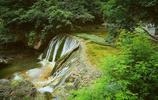 一處以野生獼猴和自然風景著稱的自然保護區
