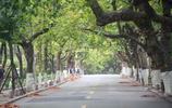 國慶中秋兩節過後青島各景區重歸靜美模式,馬路上空無一人!