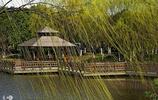 天津河東公園