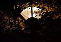 中央財經大學的燈,總有一盞為你留我愛我的中央財經大學