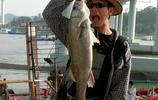 """浙江""""釣魚鏡""""一出,無人在打窩,50米水深情況一覽無遺!掉啊"""