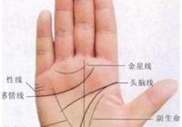 """手中有""""井字紋""""的人,此生必定大富大貴,腰纏萬貫!"""