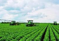 國家開放政策,農戶可以拿到補貼啦,誰可以拿到補貼?你都知道嗎