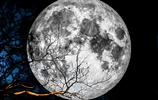全球各地超級月亮欣賞,太美了