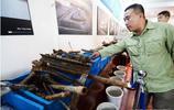 實拍日軍部隊遺址發掘出的'生化遺物',數量眾多,個個都是鐵證!