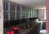 開化犬類收容所遷新址丨細說開化犬類管理那些事兒……