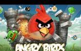 《憤怒的小鳥》原型 發怒表情顯野蠻