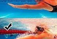自由泳泳姿比較