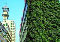 什麼樣的建築能被稱為綠色建築?