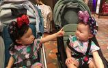 熊黛林一家人遊迪士尼,兩個小寶貝軟萌可愛