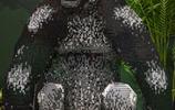 樂高動物在伯明翰的BRICKLIVE展覽