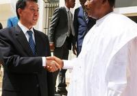 尼日爾總統優素福會見王勇