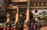 雲南這個市166億大項目從天而降,有望超過麗江,旅遊業要發展好