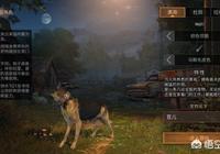 手遊《明日之後》裡的狗該怎麼選?為什麼有玩家說選黑色會後悔?