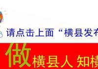 「科普」水蓼,西津國家溼地公園的水體淨化處理器