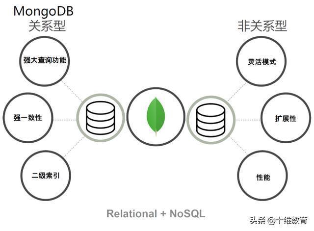 爬蟲技能:MongoDB