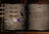 戰旗遊戲《無神之地》上架Steam 勇闖迷宮探索變異真相