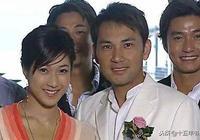 香港警匪片電視劇大全:TVB經典警匪電視劇盤點