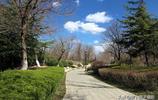 濰坊浞河公園的春天,就是這麼愜意,舒服!