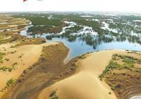 庫布其沙漠綠洲