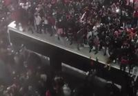 見過如此瘋狂慶祝場面嗎?加拿大全國瘋狂慶祝猛龍奪冠