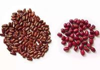 中藥材赤小豆