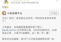 PDD加盟鬥魚僅是拼圖的1/2,那麼另一半會是哪位主播呢?