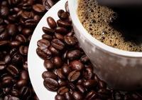 談談咖啡豆豆們~