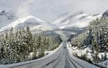 旅途中的風景:被評為世界上最頂級的觀光公路之一的加拿大冰原大道