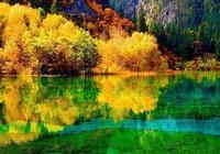 九寨溝國慶發佈:諾日朗瀑布並未消失,為原來一半寬度,附實拍圖