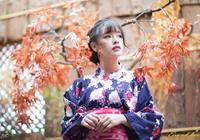 日本歷史上的織田家族、豐臣家族、德川家族三大家族關係瞭解一下