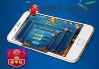 棋牌遊戲競技化勢不可擋,紅鳥棋牌遊戲開發打造綠色棋牌競技環境