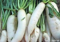 這3種菜最適合秋冬季吃了,每天吃一種,整個冬季不生病!