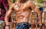 6位肌肉男星秀身材,真材實料,誰最健美