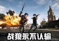 王思聰直播吃雞大罵林更新上熱搜 網友:和王校長打遊戲太恐怖了