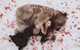 人像攝影:美女與野獸