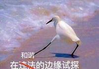 外國遊戲進中國有多難?暴雪為關愛青少年,噴血變成噴石油都不行