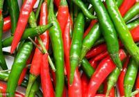 常吃辣椒有好處,教你2個簡單方便的食用方法,有空試試