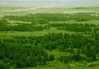 推薦丨雲杉、河流與敖包,處處是美景