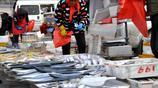 寒冬青島早市 十斤重牙鮃魚45元一斤 阿根廷大蝦28 走親訪友必備