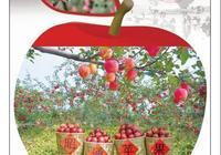 蘋果之城——中國昭通