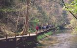 龍灣群國家森林公園一日遊,值得推薦