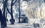 1984年哈爾濱市的冬季老照片,那時候你多大