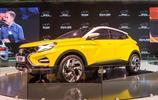 俄羅斯最大汽車品牌將進中國,售價15萬,豐田本田大眾都慌了