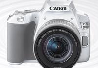 做自媒體短視頻用什麼單反?越便宜越好,能用就行,要求佳能,因為有佳能鏡頭?
