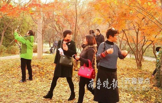 初冬勝似暖春,濟南公園遊客盈門