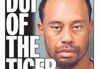 """伍茲酒駕被抓美媒表示不值得同情""""伍茲毫無希望"""""""