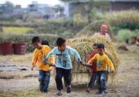 """為什麼有的人一輩子都走不出""""農村""""?因為他們的""""家""""在農村!"""