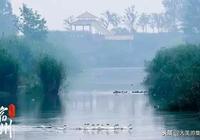 安徽:皖北唯一的世界文化遺產――隋唐大運河宿州段