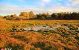 內蒙古烏蘭布統的秋天 壩上草原色彩斑斕如油畫般美麗
